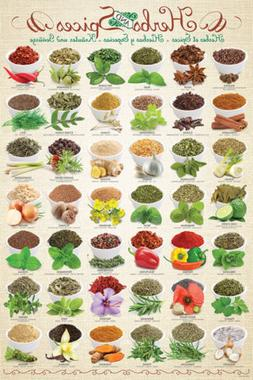 THE HERBS AND SPICES Cooking POSTER for Kitchens, Restaurant